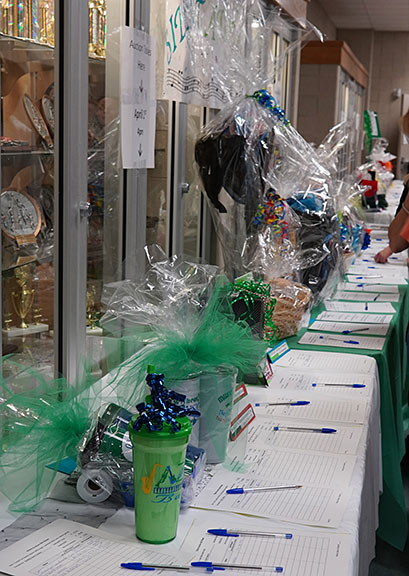 2019-04-01 A few of the Silent Auction Items at the Bradley MS Spaghetti Dinner